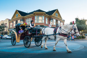 Eureka Old Town Carriage Ride