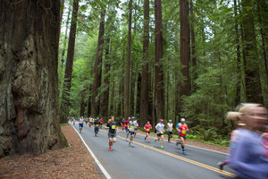 Avenue of the Giants Marathon Race