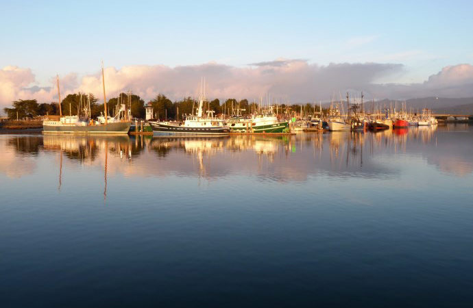 Laird, Water, Woodley Island Marina at Dawn